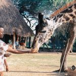 7 Reasons why Summer is the best time for vacation in Africa